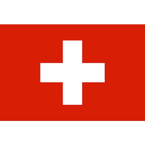 【スイス】バーゼルで160億円投じ大規模ショッピングセンター建設を計画していた中国企業、数週間前から音信不通に