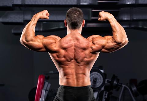 何日間筋トレをサボったら筋肉が落ちる?