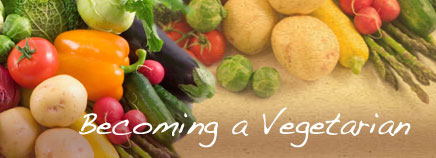 how to become vegan from vegetarian