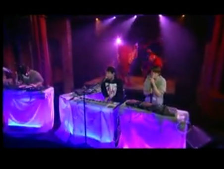 animal collective on letterman