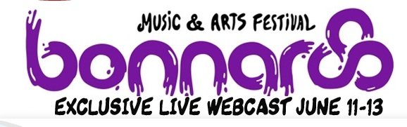 bonnaroo 2010 webcast