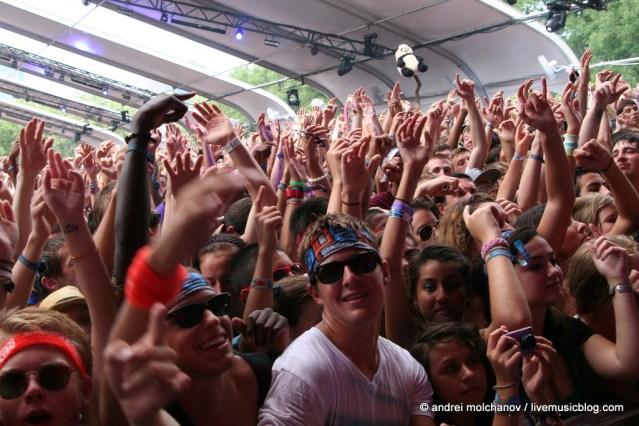 Lollapalooza Day 3 Crowd-13