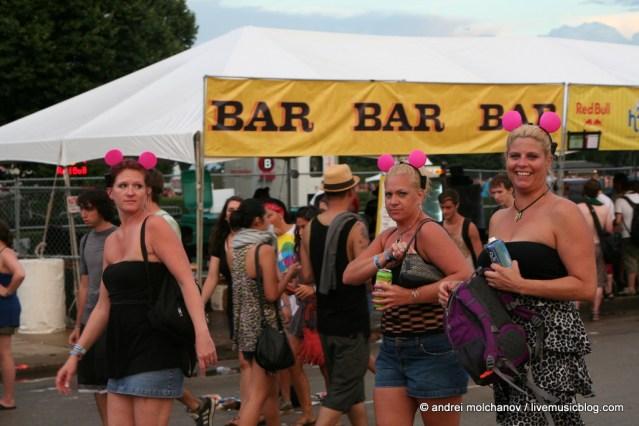 Lollapalooza Day 3 Crowd-47