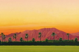 coachellabackdrop
