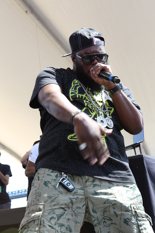 Freeway @ Roots Picnic 2014