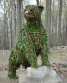 bear_hemlock