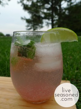 liveseasoned_summer2014_rhubarbmojito5_wm