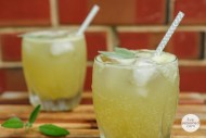 liveseasoned_summer14_gingercocktail-4