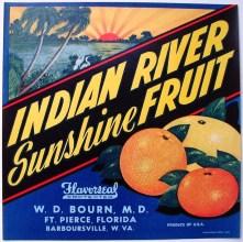INDIAN RIVER SUNSHINE FRUIT