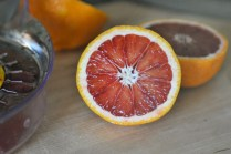 liveseasoned_winter14_bloodorangeshrub-3