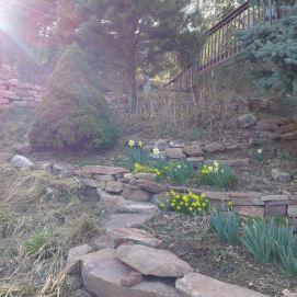 liveseasoned_spring2015_life7