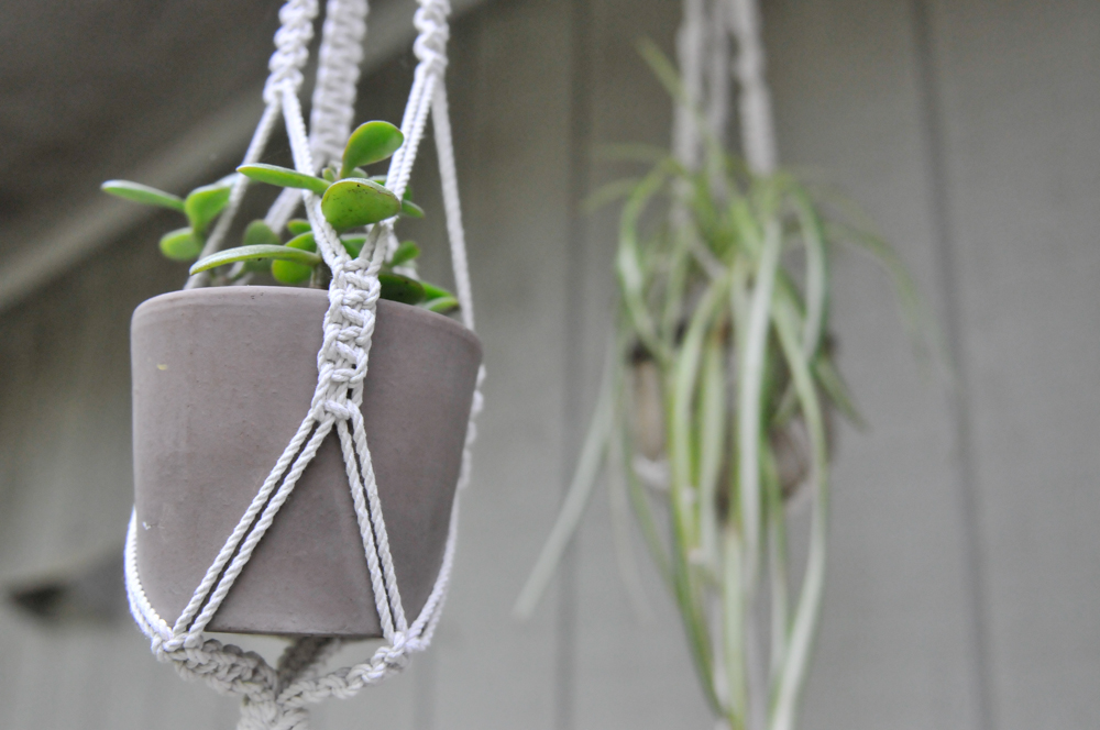 graphic regarding Free Printable Macrame Plant Hanger Patterns known as Do it yourself Macrame Plant Hangers -