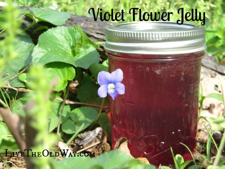 Violet Flower Jelly