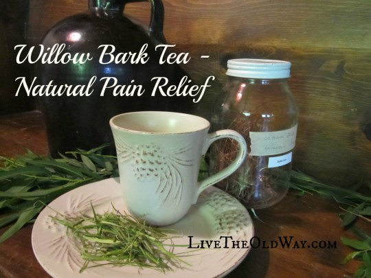 Natural Pain Relief Herbal Pain Relief