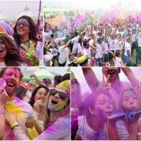 Holi Hai Collage