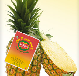 HOT for FRESH Pineapple….yay for produce coupons!!!