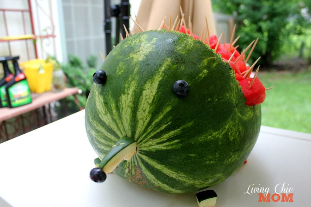 Watermelon pine 3