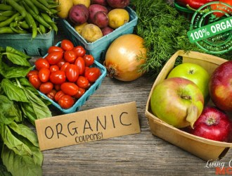 Organic and Natural Living Coupons and Savings: 10/23