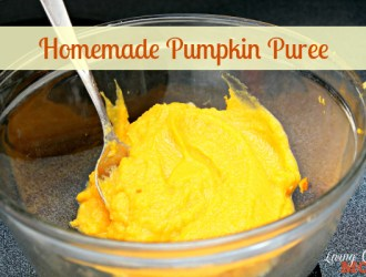 Pumpkin Puree DIY 2