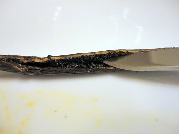 vanilla bean split knife