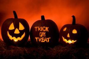 halloween_pumpkins_540x345