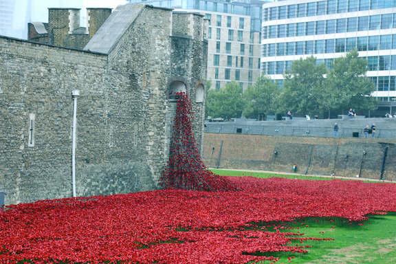 london.tower.poppies