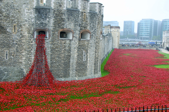 Tower of London poppy display to honor those who died in WWI