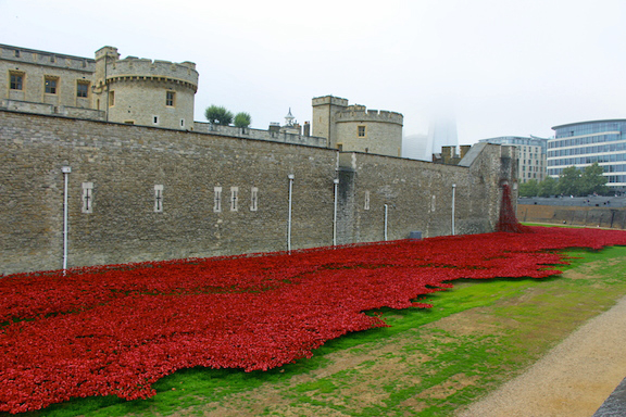london.tower.side.poppies