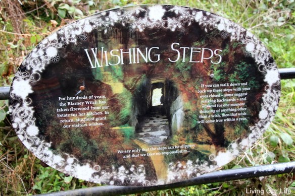 ie.wishing.steps.sign