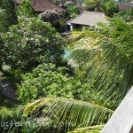 Walk In Ubud View
