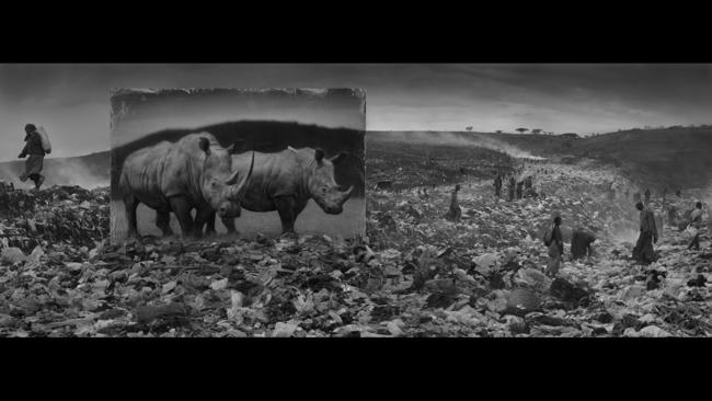 "From Nick Brandt's ""Inherit the Dust"""