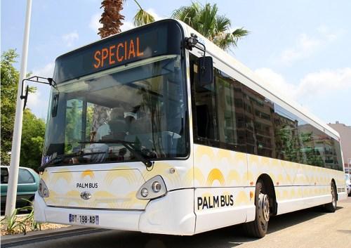 palm-bus_12