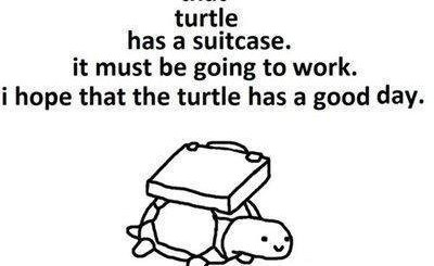 Working Turtle
