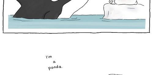 Whale Polar Bear