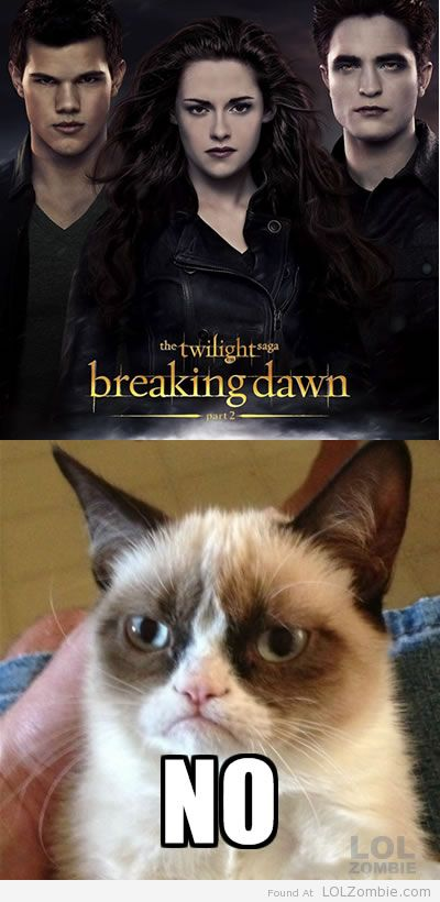Grumpy Twilight