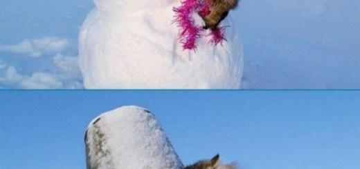 Cat Cuddling with Snowman