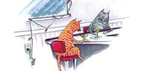 Christmas Cats Drinking