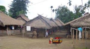 rumah-adat-senaru