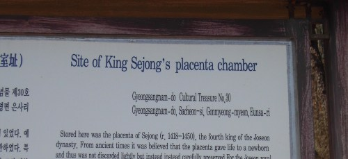 The site of Sejong's placenta chamge