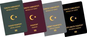 p37 Pasaport cesitleri