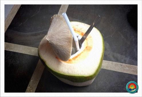 Leckere junge Kokosnuss