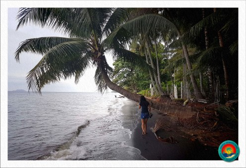 Black Sand Beach in Dauin