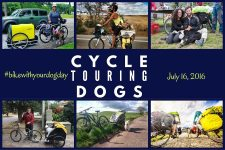 Cycle Touring Dogs