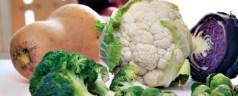 'Invierno', 80 propuestas para tu cesta de verduras