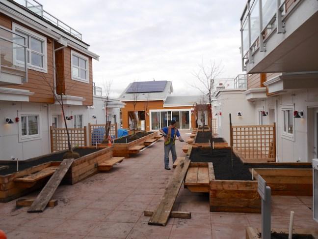 L69-020216-courtyard-planting