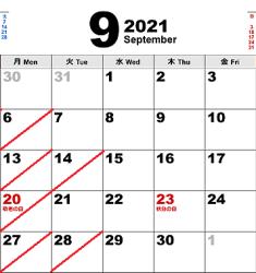 20219
