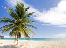 Barbados 01