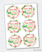 Christmas Neighbor Gift Tag PRINTABLES:: Minty & Bright by Love The Day