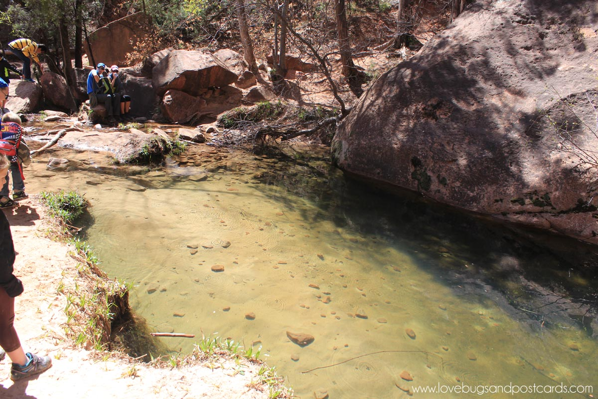 Emerald Pool Trails Hike Zion National Park