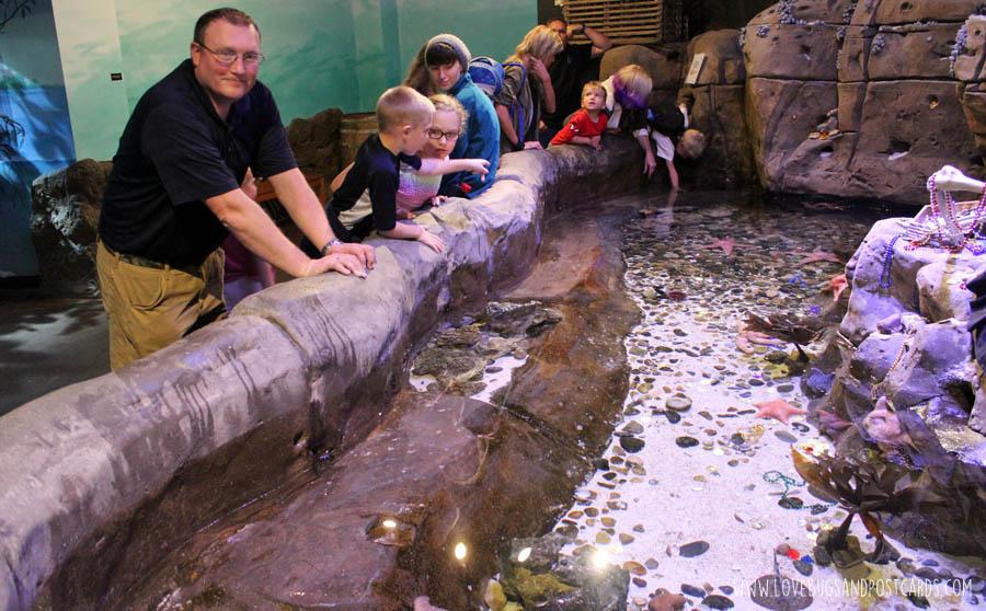 Visiting The Loveland Living Planet Aquarium In Utah